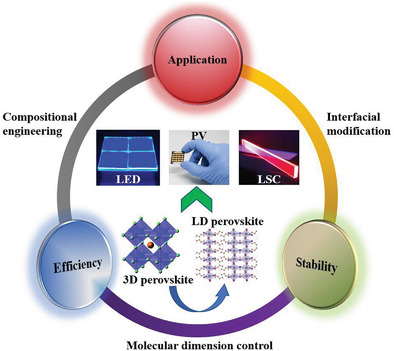 A new review article on Low‐Dimensional‐Networked Perovskites